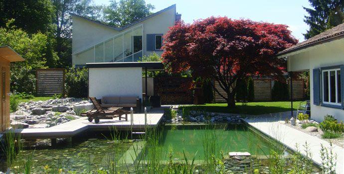 Landschaft & Baum: Gartengestaltung