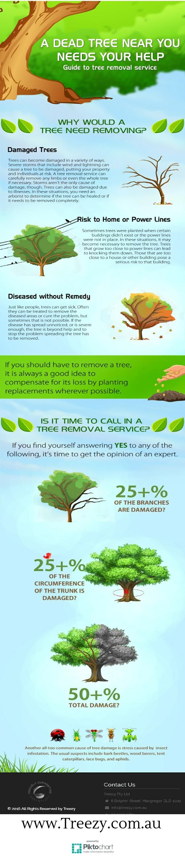 Guide to Tree Removal Services | Piktochart Infographic Editor