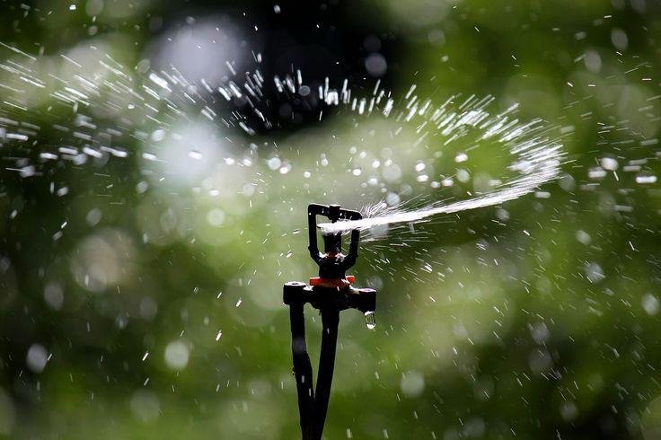 The best sprinkler pumps