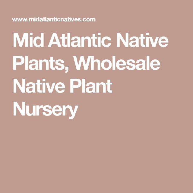 Mid Atlantic Native Plants, Wholesale Native Plant Nursery