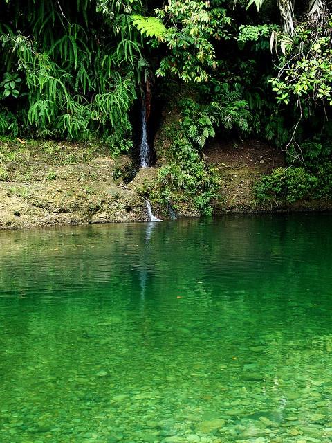 Reserva Natural San Cipriano, Buenaventura, Colombia