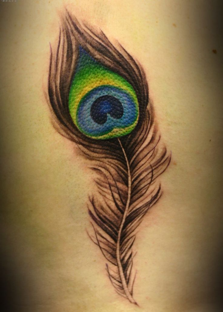 Fine Colored Peacock Feather Tattoo