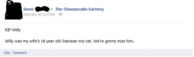 The time Dave shared news about Willy with the Cheesecake Factory: