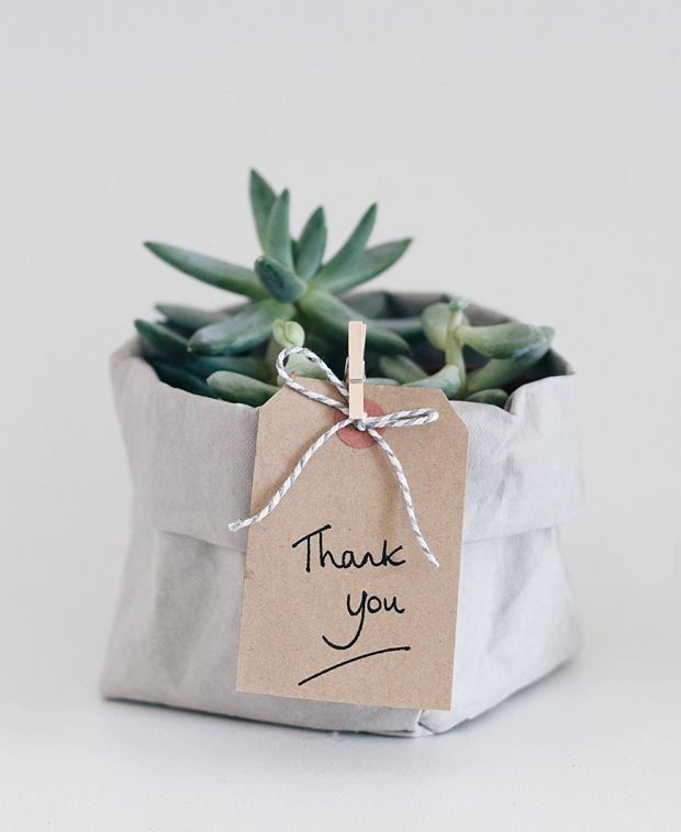 Urban Jungle Bloggers: Give a Friend a Plant via @abidare