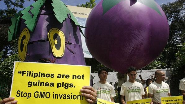 Ativista vestido de berinjela carrega cartaz contra alimentos geneticamente modificados na frente do Departamento de Agricultura em Manila, nas Filipinas. O protesto marca o Dia Mundial do Meio Ambiente nesta terça-feira