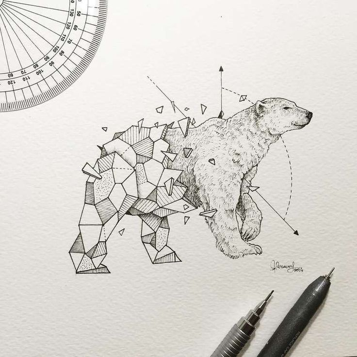 Read Awesome Intricate Drawings Fuse Animals And Geometric Shapes