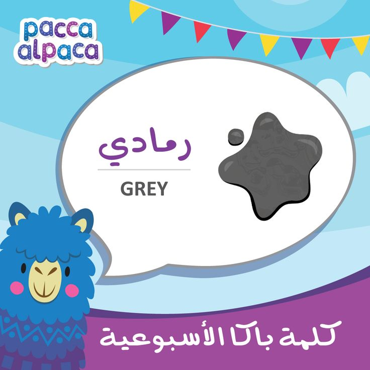 This week Pacca learns how to say grey in arabic!