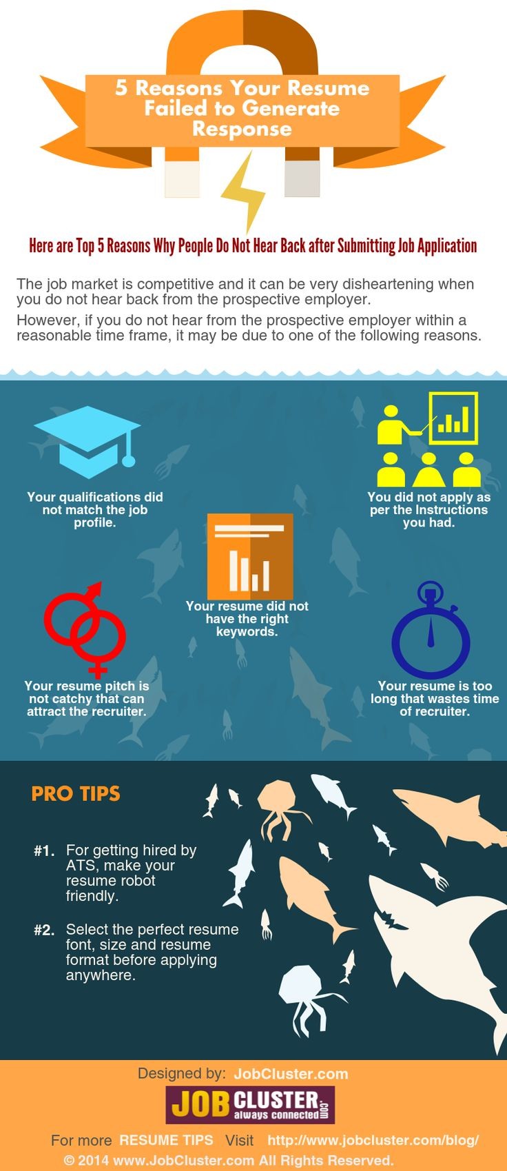 5 Reasons for Resume Pitfalls infographic