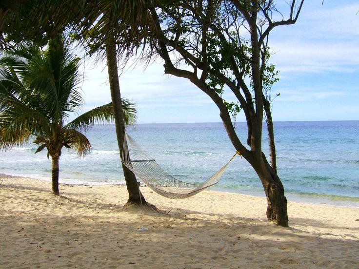 29 best Beach Hammocks Oh Yeah! images on Pinterest ...