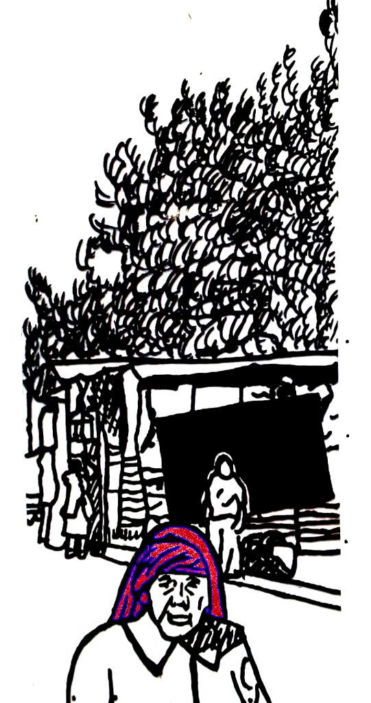Mujeres de Tlacolula con tocados y rebozos (5)