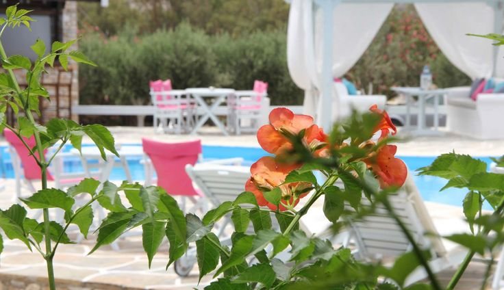 http://www.islandhouse.gr/