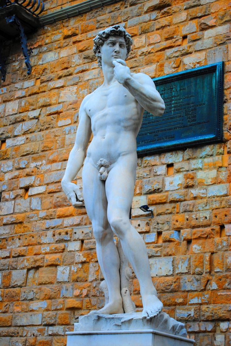 David, Floransa