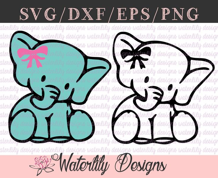 Baby Elephant SVG - Cut File - Instant Download - Animals - Bow - Cricut - Silhouette by WaterLilyBows on Etsy