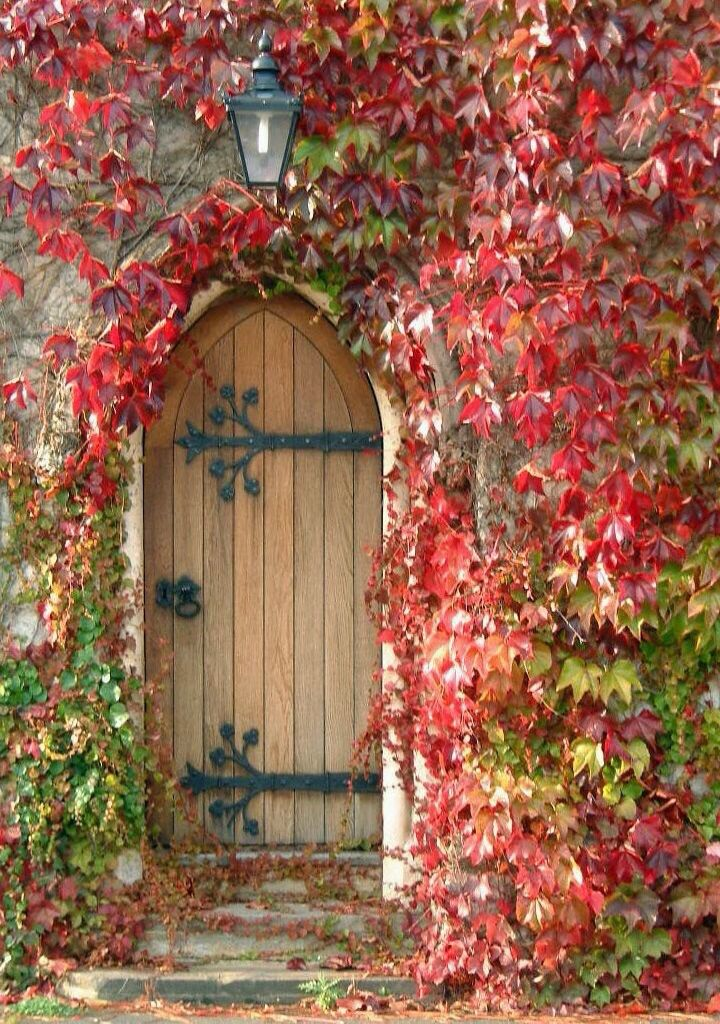 Exquisite planked gothic style wood vintage door with iron strapping and lantern light agove. #redleaves #fallinspiration #vintagedoor