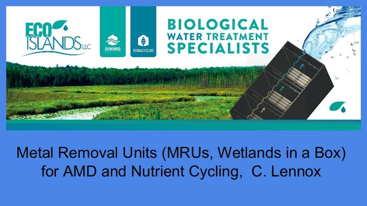 Metal Reclamations Units (MRUs) are passive, modular, scalable, rapidly deployed wetland bioreactors. The biofilm which grows upon the support matrix inside th…