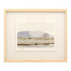 adriaan vorster framed bushveld 71.5x60cm