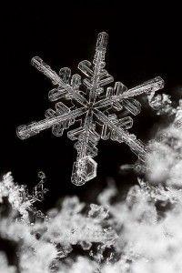 Modern-day novel writing   Understanding the snowflake method