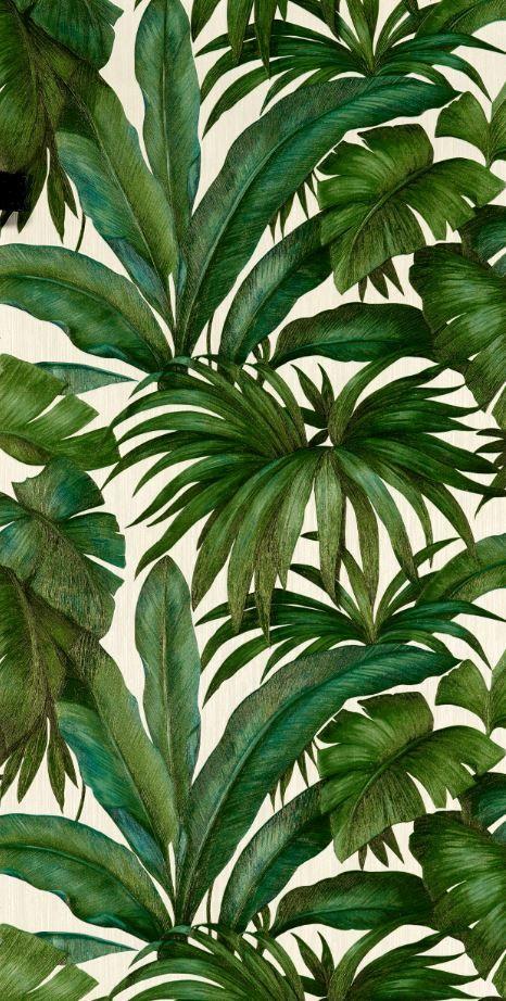 Papier Peint 4 Murs Versace Giungla Feuillage En 2018 Pinterest
