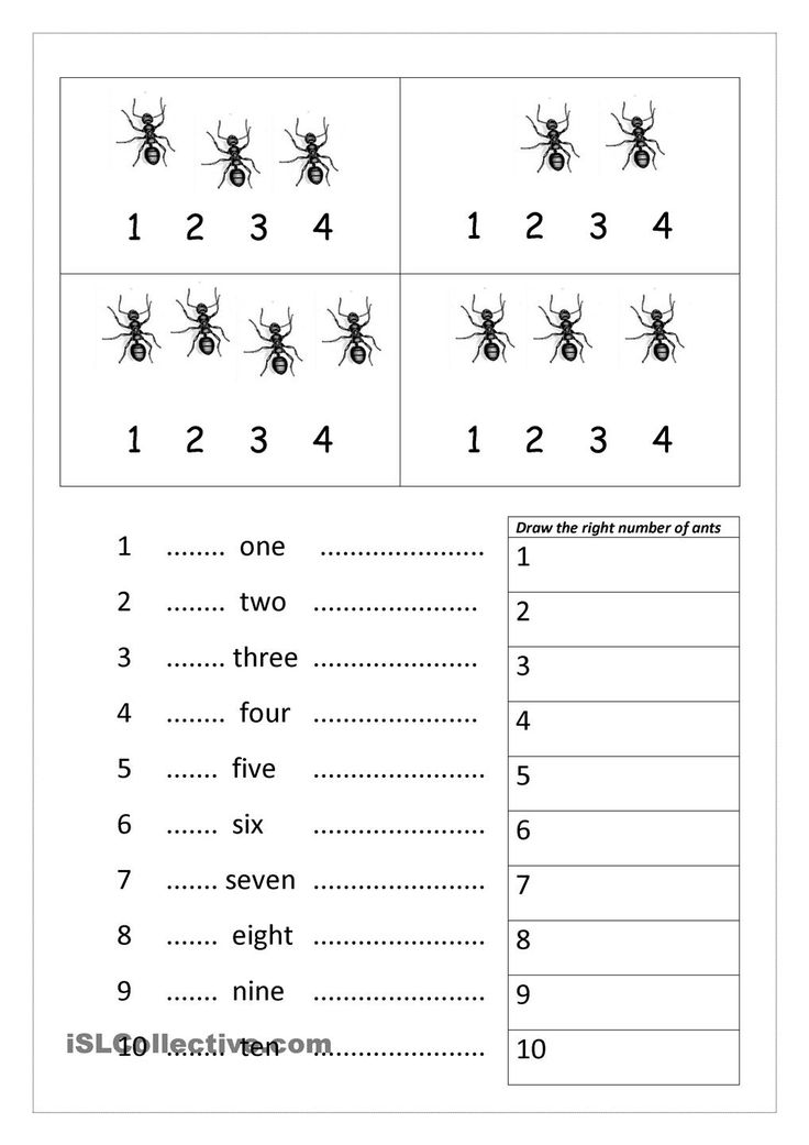 88 best Homeschool: Ants images on Pinterest | Ants, Ant and Bug crafts