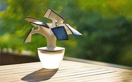 Produrre energia elettrica con il bonsai Electree Mini