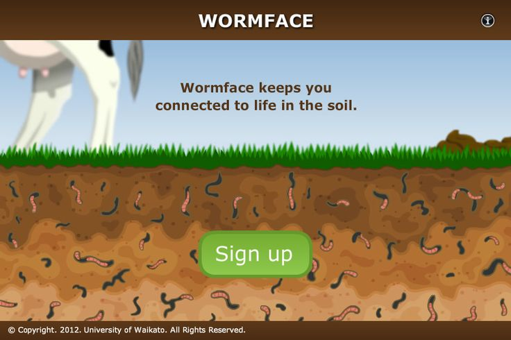 Wormface - Social Networking for Earthworms - STUDENT ACTIVITY. In this activity, students research an earthworm of their choice before completing a Wormface profile for their earthworm. This activity is designed to replicate the creation of an online social networking profile (like Facebook) and requires computer access.