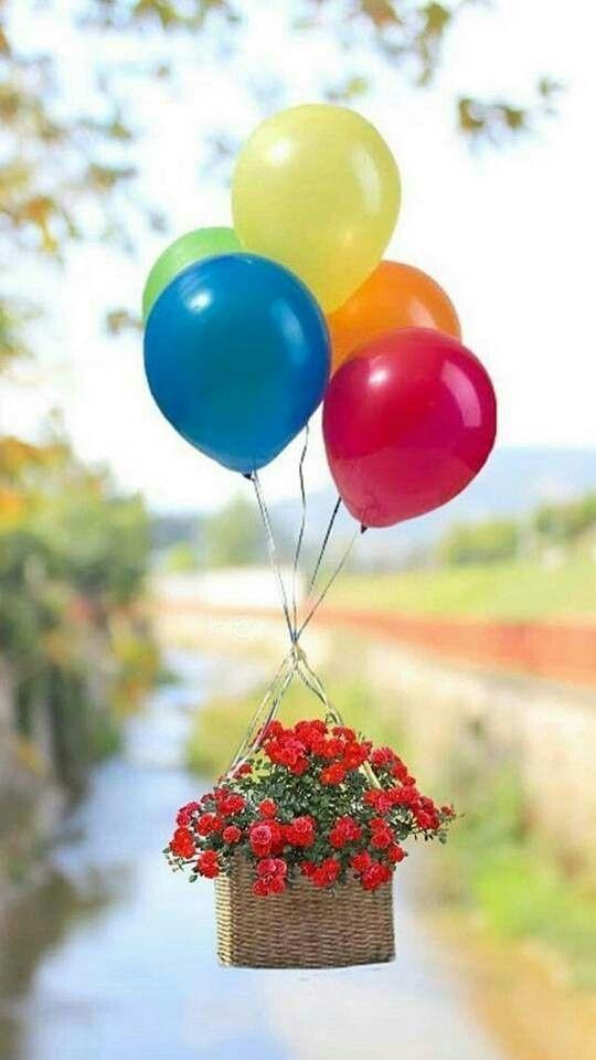 его с днем рождения картинки шарики и цветы картинки самые крупные