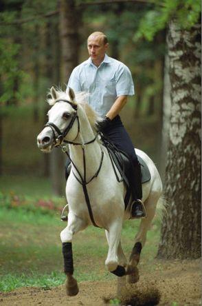 Vladimir Putin riding a pony