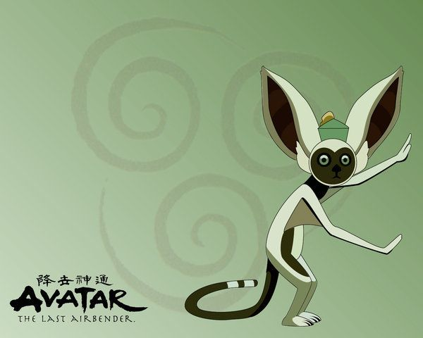 Image result for momo ATLA concept art | The last avatar, Avatar ...
