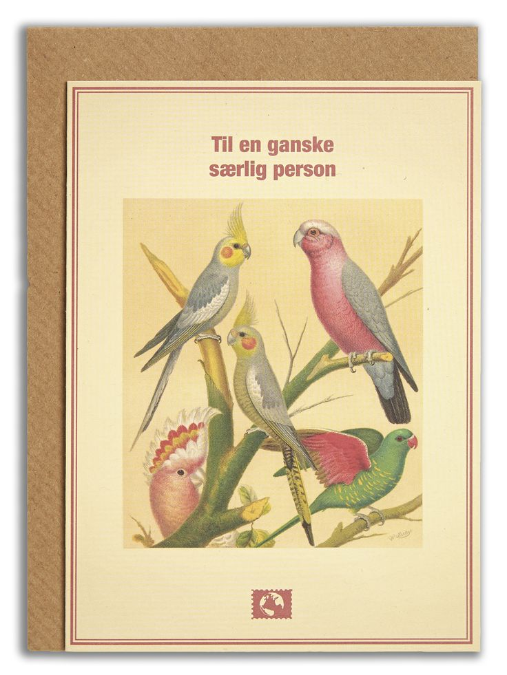 """Til en ganske særlig person"". #messageearth #sustainable #greetingcards #sustainability #eco #design #ecodesign #vintage #cards #peculiar"