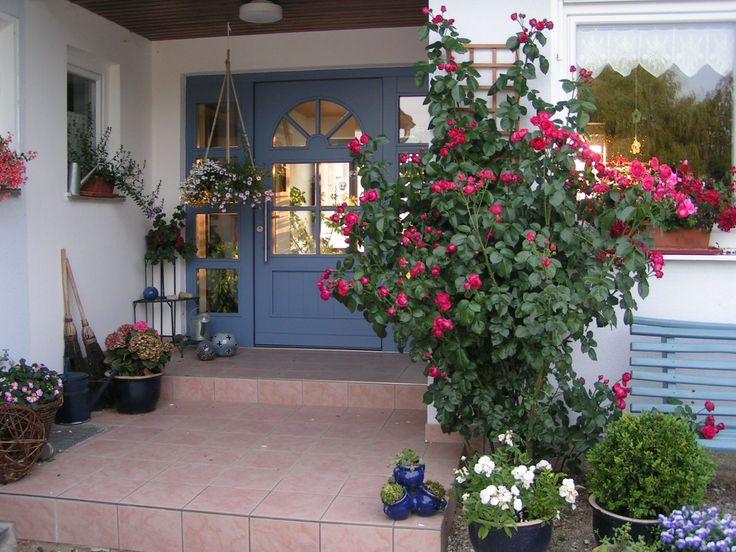 red eden rose garden pinterest. Black Bedroom Furniture Sets. Home Design Ideas