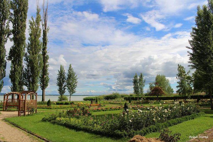 A parton - Révfülöp - Balaton - Dunántúl - Hungary  fotó Beledi Márta
