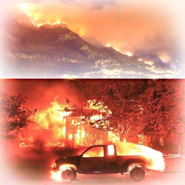 Chi sono i veri responsabili degli incendi boschivi?