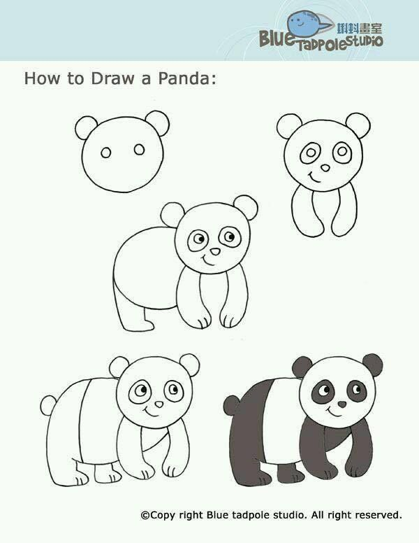 16 best draw step by step images on pinterest how to draw to draw and drawing for kids