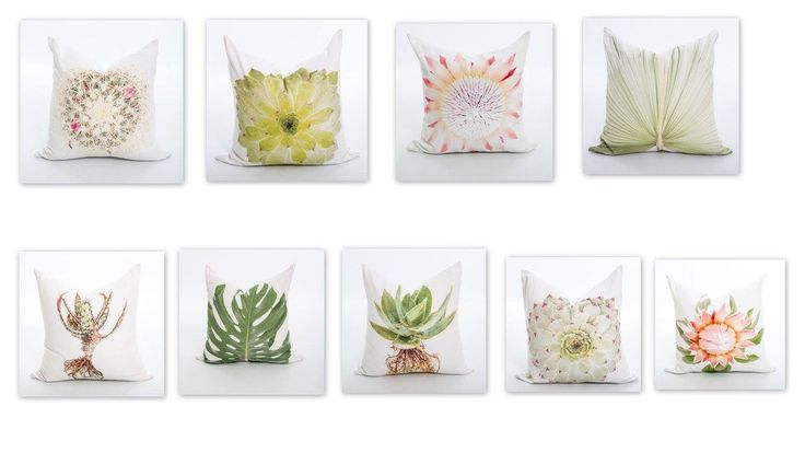 Cushions with Photographs of Aloes proteas succulents from South Africa