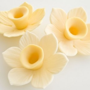 How to make a gum paste daffodil