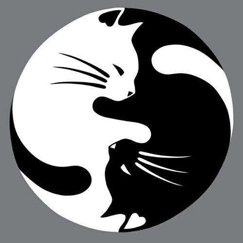 ying yang gatuno