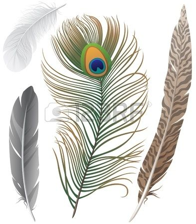 176 best PLUMAS images on Pinterest | Feather art ...