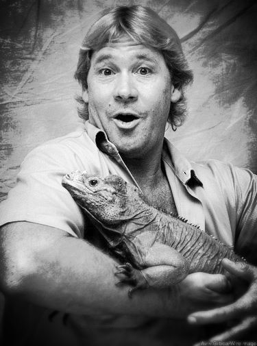 Crocodile hunter coloring pages ~ 833 best images about STEVE IRWIN & FAMILY on Pinterest ...
