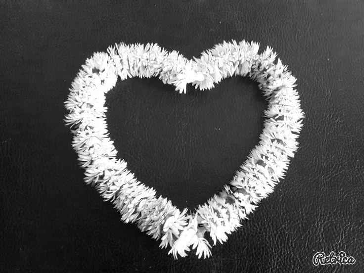 Coeur en paquerrettes ❤