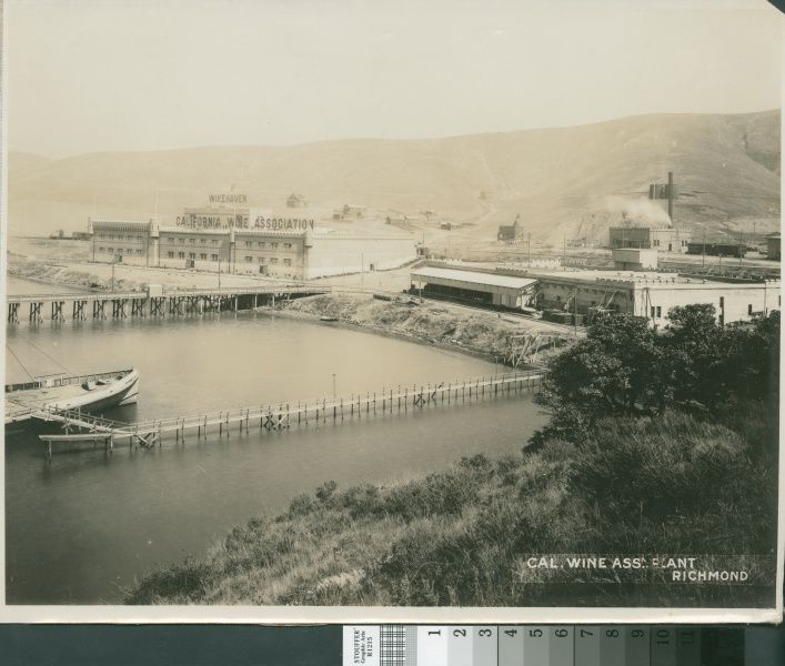 After the earthquake, the California Wine Association built Winehaven at Pt. Molate, across the bay near Richmond. It was the largest winery in the world. The CWA shut it down right before Prohibition.