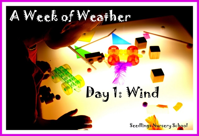 A focus on wind (part of a weather unit)