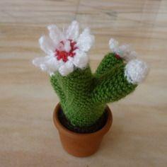 Cactus au crochet fleurs blanches dans son pot en terre cuite