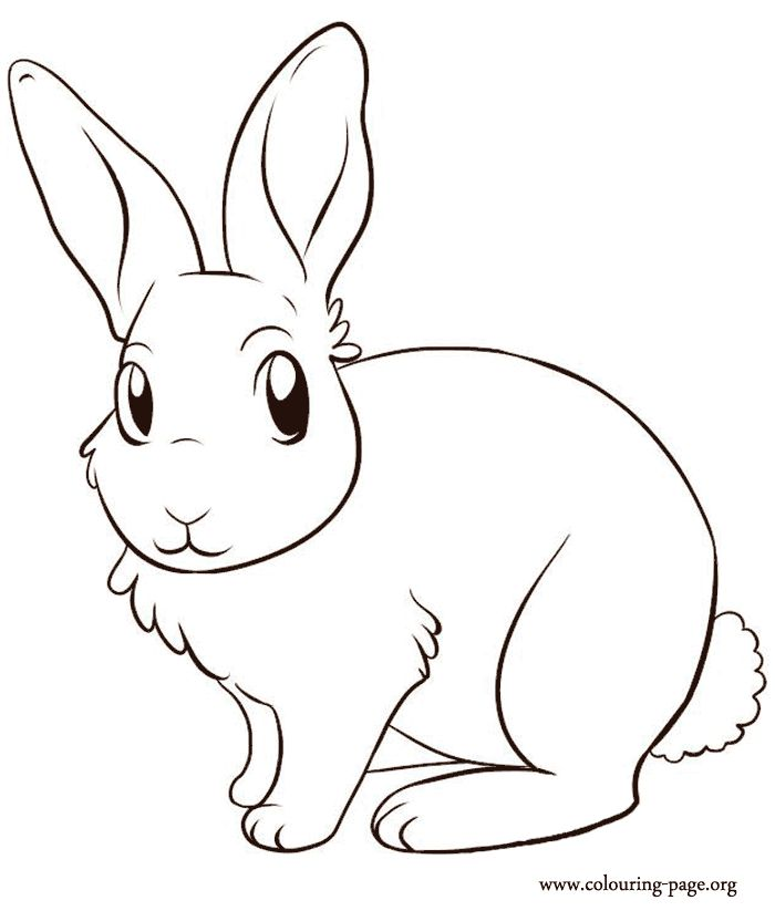 Rabbits and Bunnies A cute bunny coloring page Easter