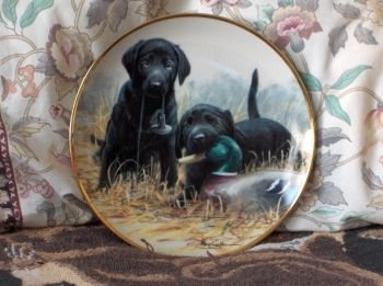 FRANKLIN MINT Beginners Luck Puppy Dog Plate 1991  http://AJunkeeShoppe.Webstore.com: