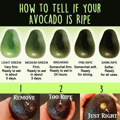 Avocado   How to tell if an avocado is right