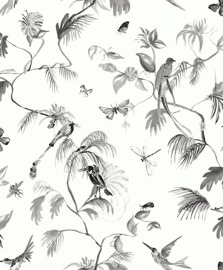 Paradijs van vogels behang zwart/ wit - De felle vogels vliegen bijna van het behang af, zo echt ziet het eruit. Door de witte achtergrond en donkere vogels is er een mooi contrast. Zelfs de kleinste details op het behang zijn goed te zien. Leuk voor in de gang of zitkamer.