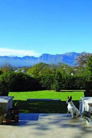 Views from verandah of #Stellenbosch wine farm: luxury #investment idea.