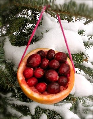 A love basket for the birds, Cut out an orange or grapefruit, empty the fruit and replace with cranberries, winter berries and/or UNSALTED nuts.