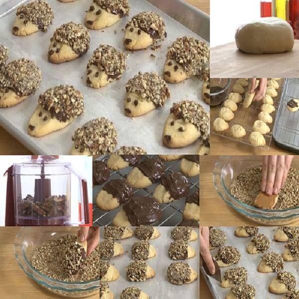 biscotti porcospino ricoperti di nutella