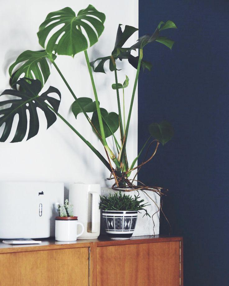 67 besten einrichten mit blau bilder auf pinterest blau. Black Bedroom Furniture Sets. Home Design Ideas